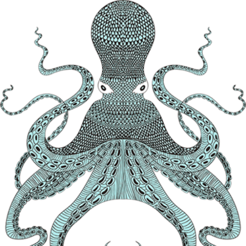 cropped-octopus-500x500.png